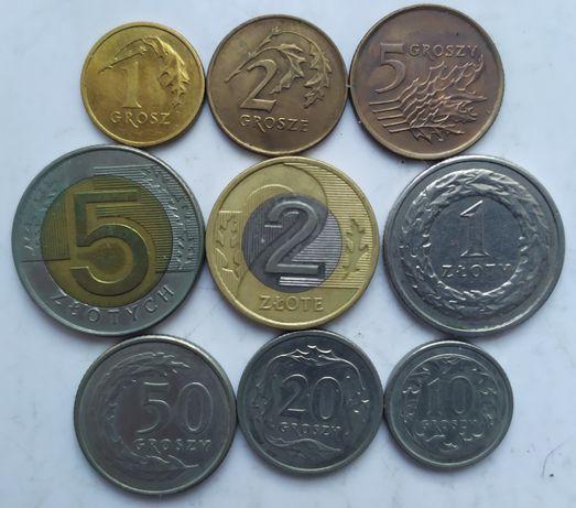 Злоті і гроші набір монет різних номіналів Польща