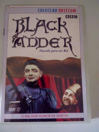 Black Adder 2 - Nascido para ser Rei e  Raínha das barbas