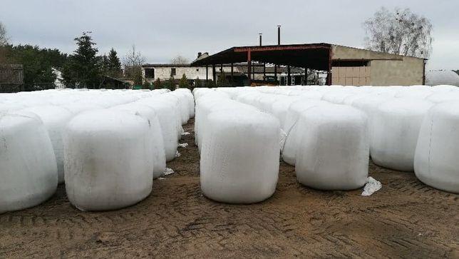 wysłodki buraczane belowane 1200 kg
