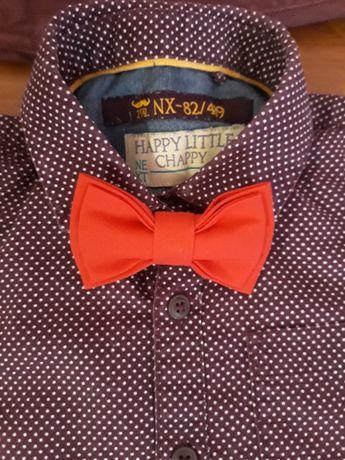 Продам рубашки и футболку Hext Chicco