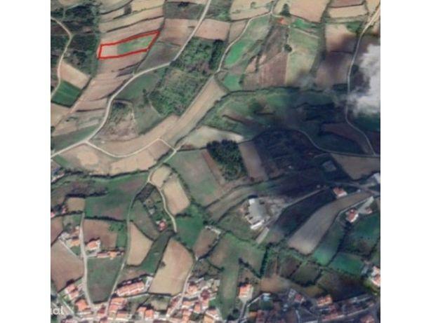 Terreno agrícola, com 7280 mts, perto da Lourinhã