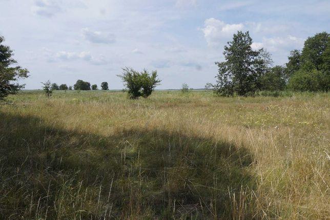 działka rekreacyjna widokowa nad jeziorem Nowe Warpno