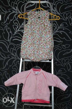 bluza ADIDAS rozm.68 + sukienka COCCODRILLO rozm.86 dziewczynka