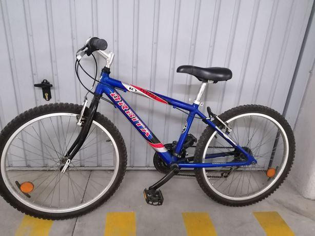 Bicicleta Órbita Roda 24