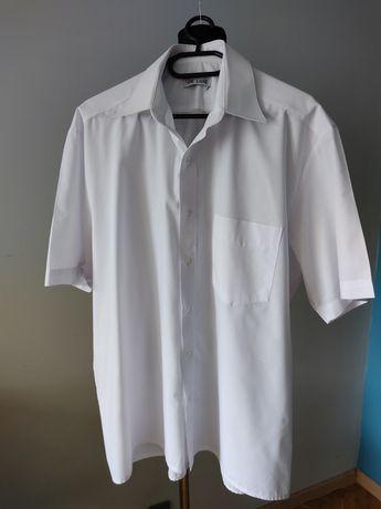 Biała Koszula męska z krótkim rękawem 43 / 176
