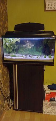 Zestaw akwariowy