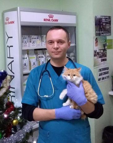 Ветеринарный врач. Все виды Вет.услуг