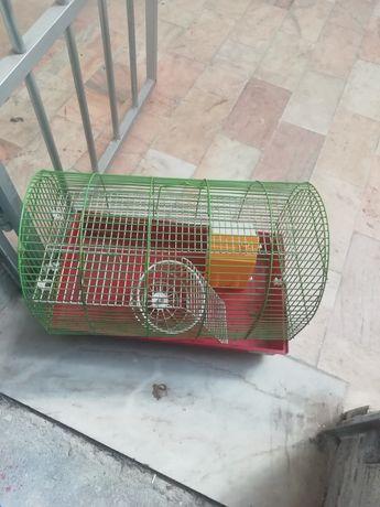 Gaiola ratinhos ou outro