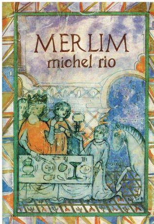 8594 Merlim de Michel Rio