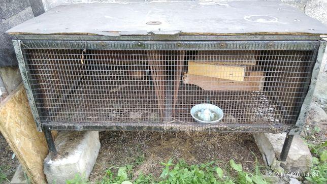Клетка для кроликов, нутрий