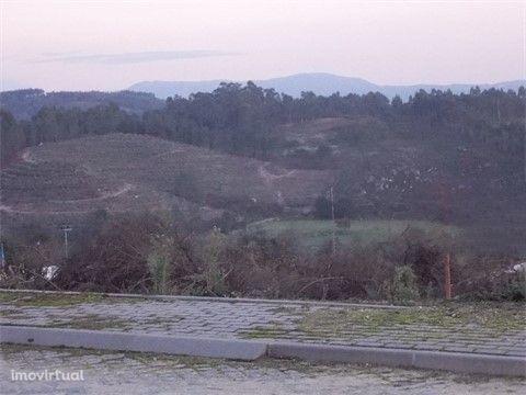 Terreno  Venda em Rendufinho,Póvoa de Lanhoso