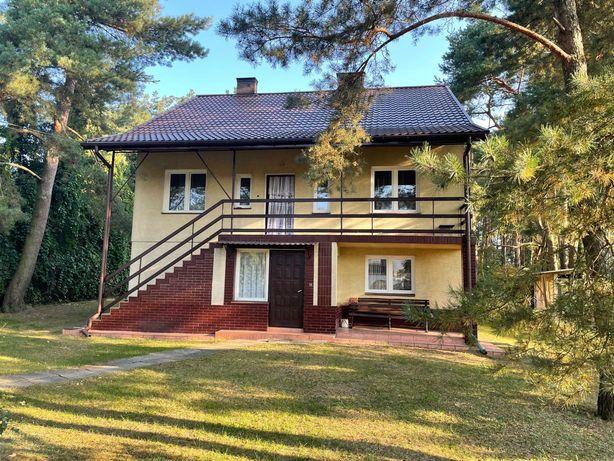 Sprzedam dom w Ostrołęce w sąsiedztwie lasu