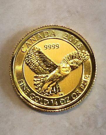 Złota moneta kolekcjonerska Kanada Sowa Śnieżna 2018r