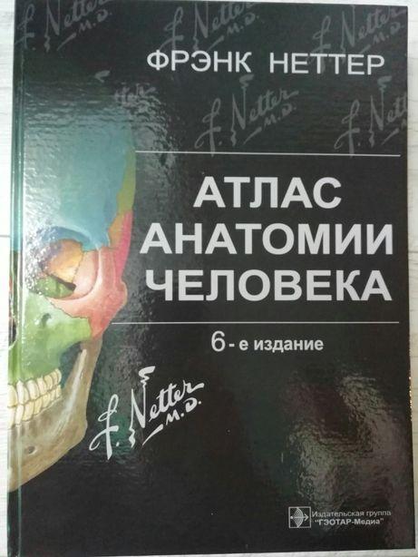 Атлас анатомии человека Ф Неттер 6-е издание (на русском+латынь)