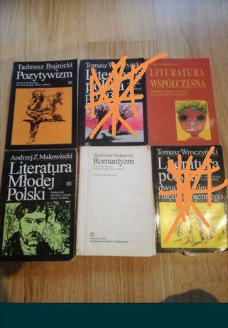 Język polski Literatura, Pozytywizm, Romantyzm