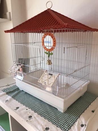 Gaiola pássaro pequeno
