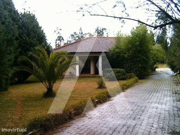 Quinta em Alquerubim com moradia T2, garagem para 7 autom...