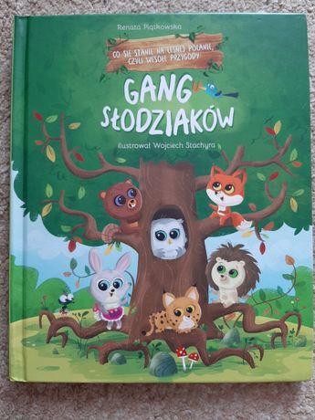 Książka GANG SŁODZIAKÓW Co się stanie na leśnej polanie.