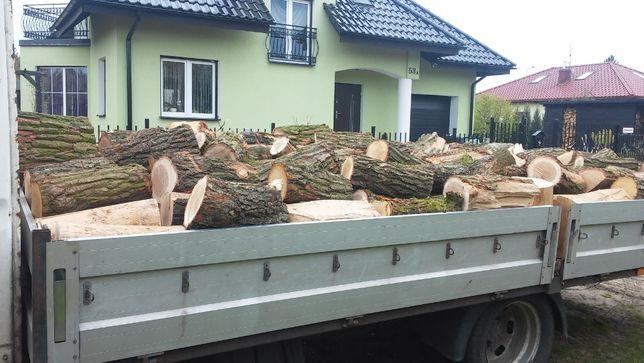 Drewno sosnowe , cięte w klocki 30 lub 40 cm z dowozem