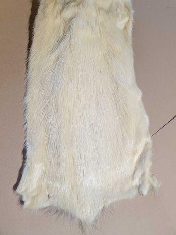Skóra futro nutria biała wyprawiona