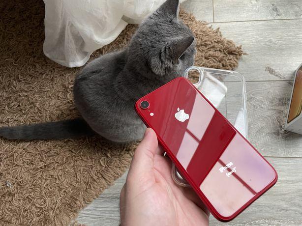 iPhone Xr 64gb Red + ПОДАРОК