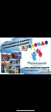 Тхэквондо для детей, секция Taekwondo спорт для детей на салтовке