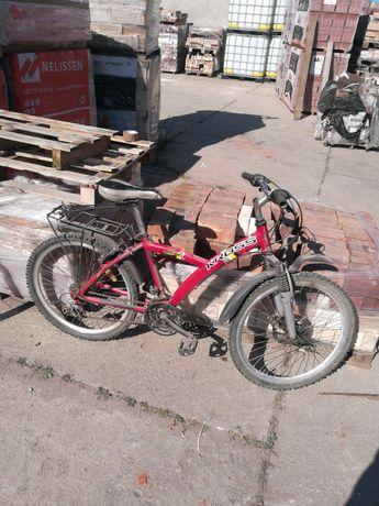 Rower  za 100 warto