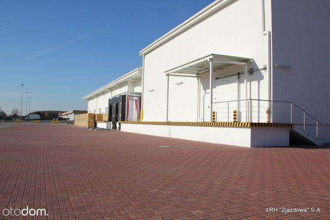 Hala magazyn 740 m2 rampy, monitoring, klima.