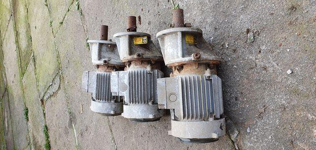 Motores cenfim de farinha