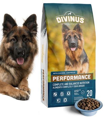 Karma dla psa DIVINUS 42% Mięsa 20kg dla Owczarka Labradora Goldena