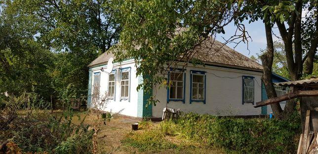 Продам дом, с. Нечипоровка 60 соток. 100км от Киева