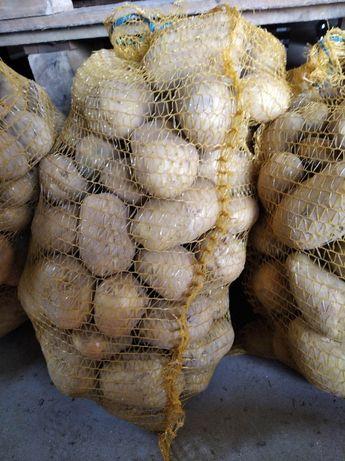 Sprzedam ziemniaki po 15kg worek