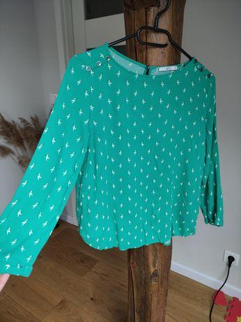 Zielona bluzka w ptaki