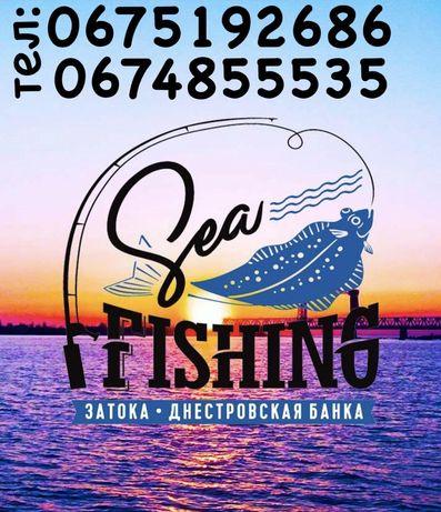 Морская рыбалка из Затоки!
