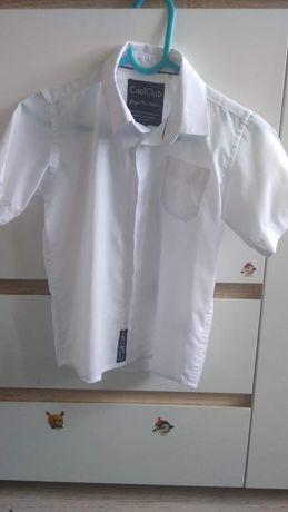 Biała koszula cool club