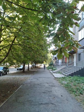 *Однокомнатная квартира в центре Соцгорода, ул. Каминского (Олейникова