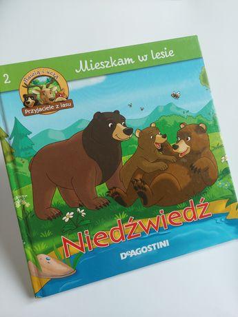 Mieszkam w lesie - Niedźwiedź - Książeczka dla dzieci