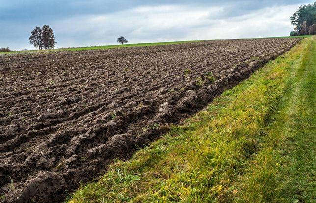 Ziemia rolna Warnice 6,5 ha gmina Dębno