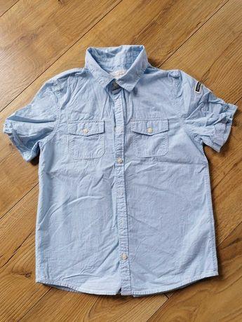 Koszula H&m na lato krótki rękaw chłopiec