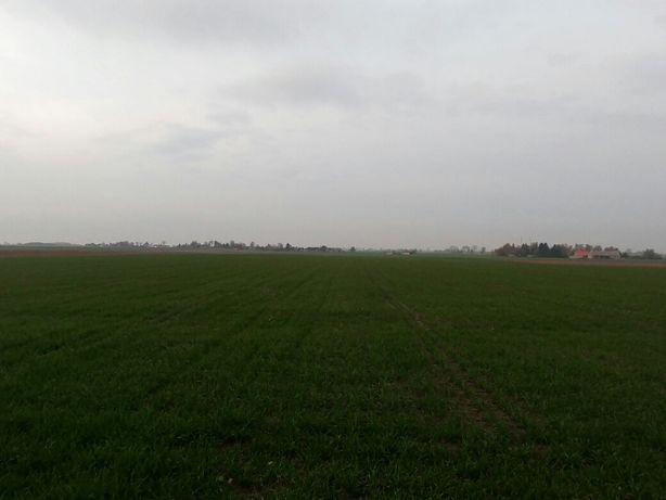 Ziemia rolna, grunty orne