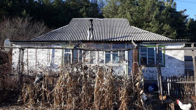 Продам кирпичный жилой дом у соснового леса в с. Левковка недорого