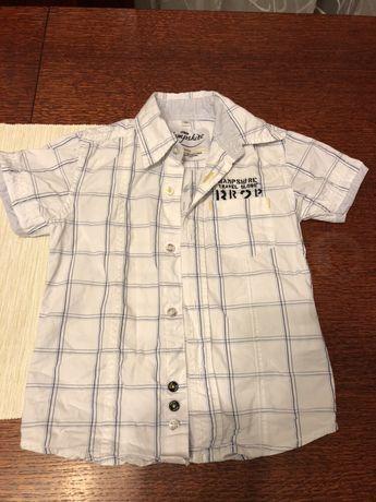Koszula Hampshire rozmiar 98cm