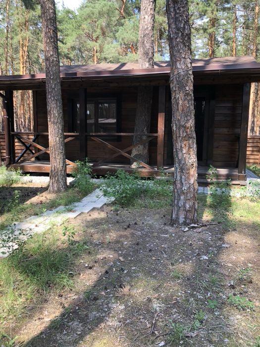 Продам участок с домом ПГТ Старый Салтов Старий Салтів - зображення 1