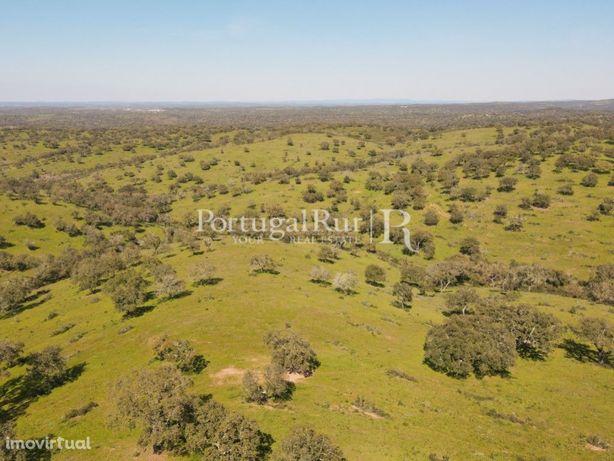Herdade de 800 hectares com 3 barragens