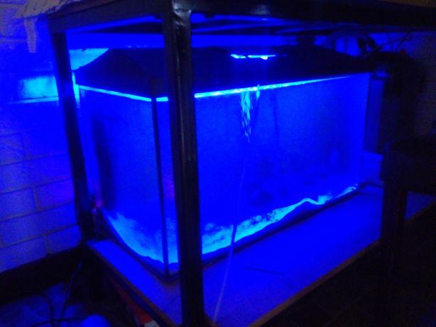 Akwarium 105 l z pełnym wyposażeniem