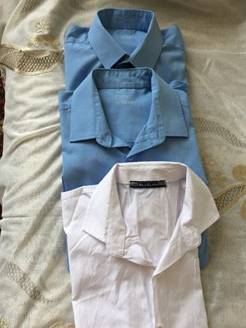 Три школьные рубашки одним лотом голубые от NEXT на 12 лет рост 153 см