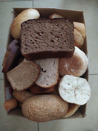 Oddam suche pieczywo - chleb, bułki