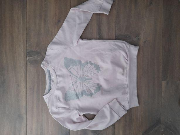 Bluza dla dziewczynki 110 pepco