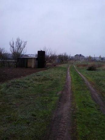Под строительство участок 10 соток приват земли в Ст Белоусе Чернигов - изображение 1