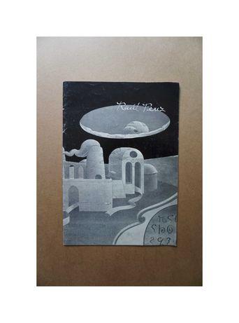 Catálogo Raúl Perez 1982 Galeria de São Mamede (exposição arte)